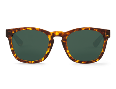 Imagen de HIGH CONTRAST TORTOISE ISOLA WITH CLASSICAL LENSES DE MR.BOHO