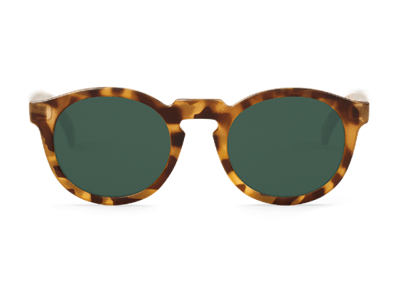 Imagen de HIGH-CONTRAST TORTOISE JORDAAN WITH CLASSICAL LENSES DE MR.BOHO